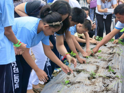East-West Seed Philippines and SM City Baliwag holds vegetable planting event for PWDs