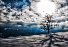 FOTOGRAF LUZERN - HAROLD-PHOTOGRAPHY
