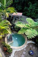 Gymea plunge pool.jpg