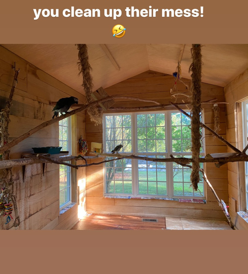 Sunroom residents need their room clean
