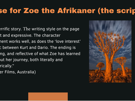 "The pitch deck of ""Zoe the Afrikaner"""