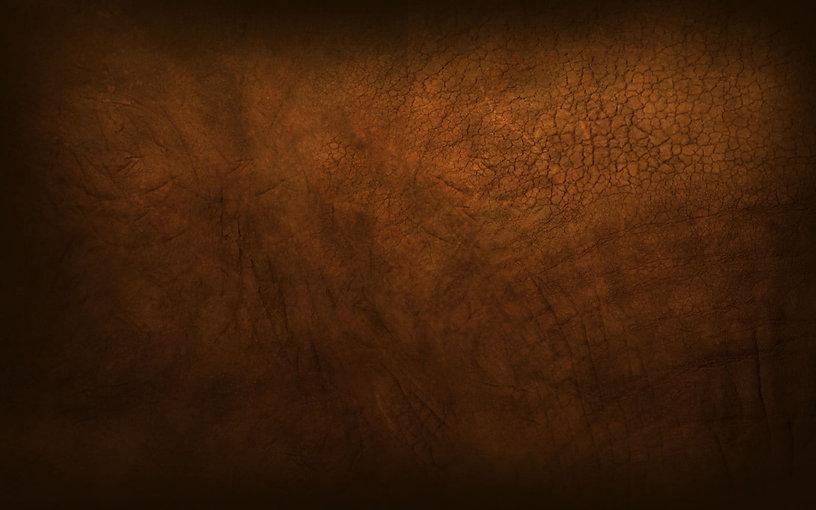 brown bison leather.jpg