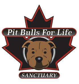Fundraiser for Pitbulls For Life Foundation    February 14th  2019  , 7 pm-9 pm