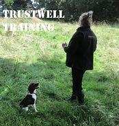 Trustwell training.jpg