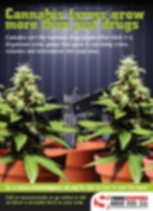 cannabis poster.jpg