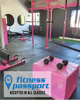 FITNESS PASSPORT PROMO.jpg