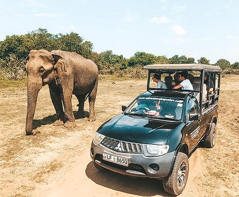 Udawalawa National Park