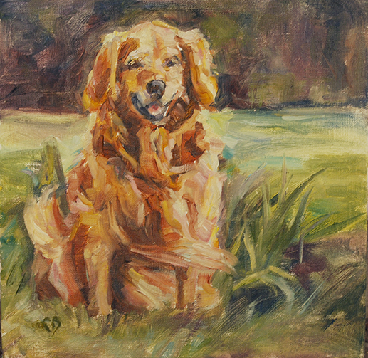 Golden Retriever 3 .jpg