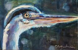 Heron 3.jpg