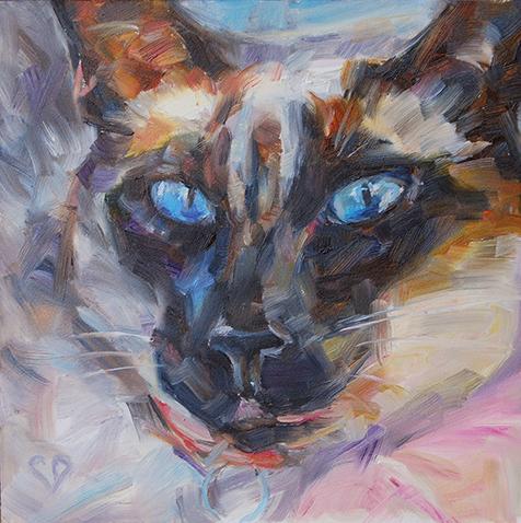 Siamese Cat 3 .jpg