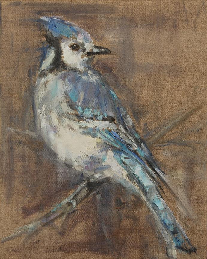 Blue Jay 3 .jpg