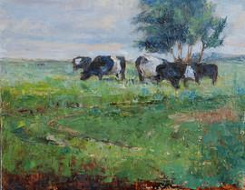Black and White Gateway cows 3 .jpg