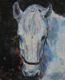 White Horse 3.jpg