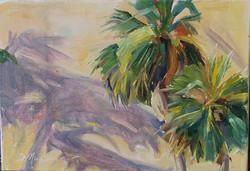 Shadow Dancers- palm trees 3 .jpg