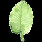 Tropische Blätter 1