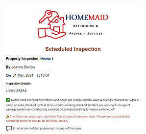Inspection Report2.png