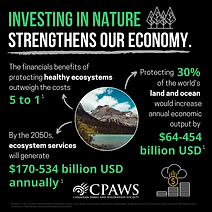 Economic Investment Infographics.png