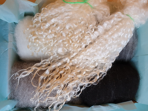 Fibre & Locks - Shetland, Jacob, Blue Texel, Wensleydale & Teeswater Box - GREYS