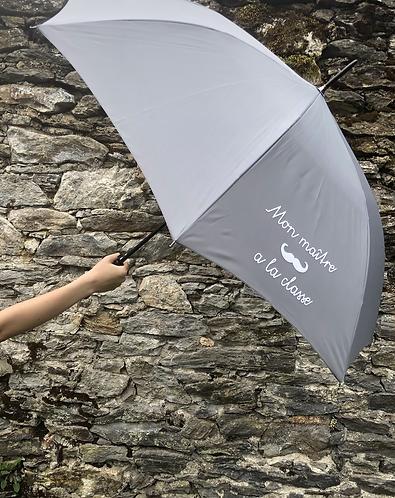 Sidonie le parapluie ..a la classe !