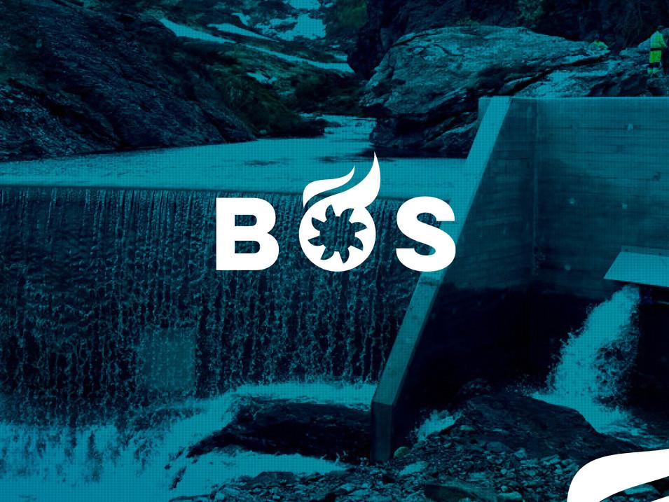 Logo, profil, nettsidedesign