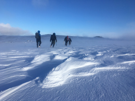 Bespoke Scottish Winter Walks