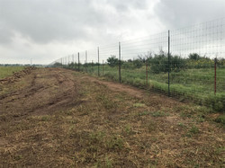 deer-fence-contractor-8