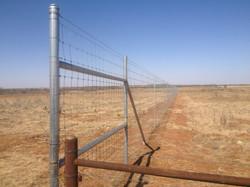 deer-fence-contractor-24