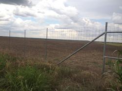 deer-fence-contractor-18
