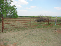 cattle-fence-contractor-7