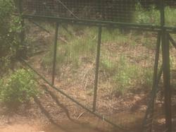 farm-fencing-contractor-water-gaps-1