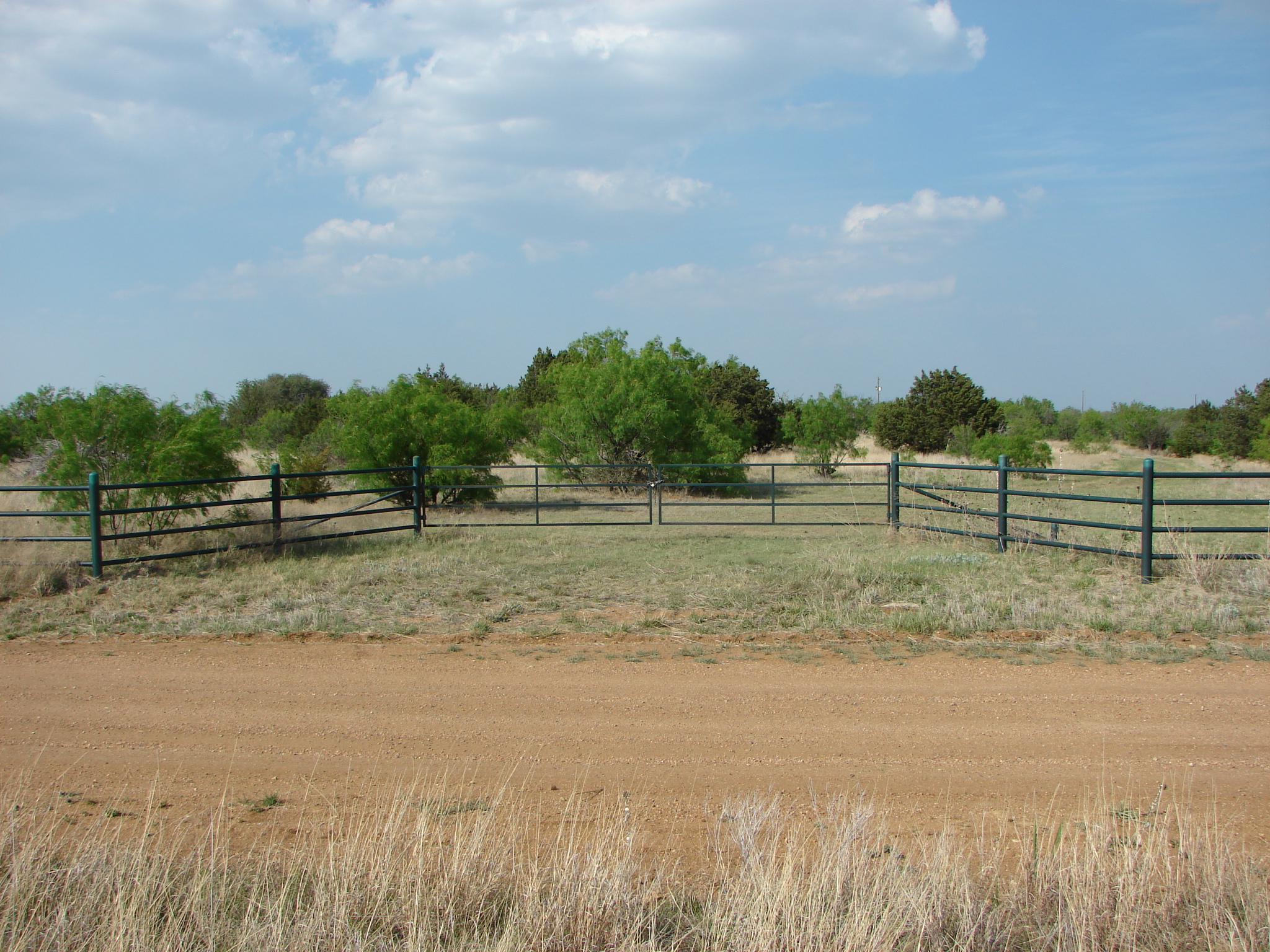 cattle-fence-contractor-9