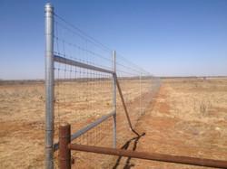 deer-fence-contractor-30