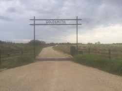 cattle-fence-contractor-6