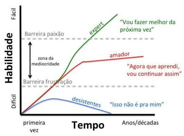 Treinamento e Desempenho ao longo do tempo (Gráfico de Alysson Muotri)