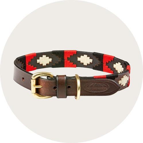 Hundehalsband ● Leder ●  Grösse S–XL