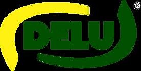 delu-logo.png