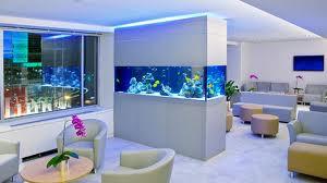 Aquarium builders design and create unique aquariums