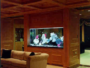 Fine Custom Aquarium And Cabinetry Will Amaze Your House Guests