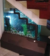 Natural Aquarium Designs In San Antonio
