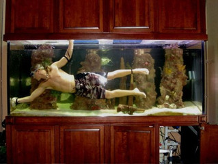 Setting Up A Saltwater Aquarium ~ Fish Tank Cleaning (part 2 of 4)