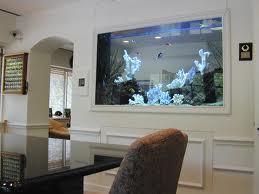 Aquarium contractors with confidence. Hire the Best