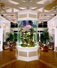 The ABC's Of Aquarium Design In San Antonio