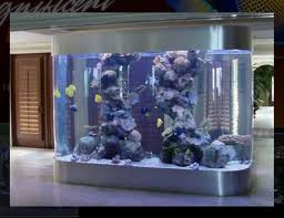 Add Value To Your Home With A Custom Aquarium Design