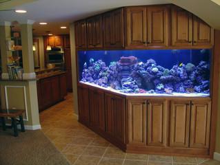 Custom Aquarium Stands - The Total Package