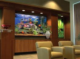 Marine Aquarium Designs Make Your Business Stand Out