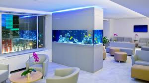 Are Fresh Water Aquariums The Best Choice For Your Business?