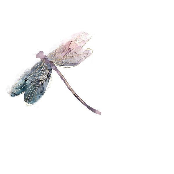 Dragonfly .jpg