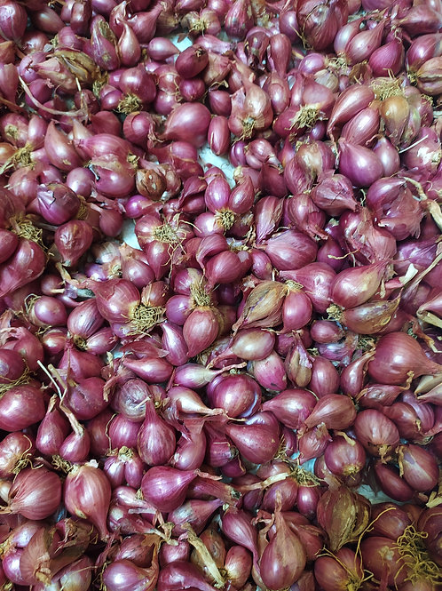 Small Onions - 1 Kg