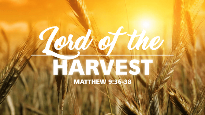 The Season Of Harvest