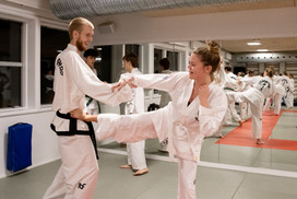 Taekwondo013.jpg